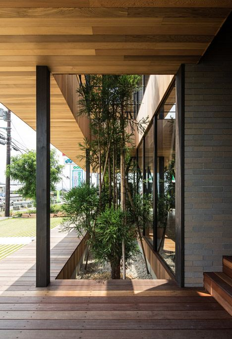 Rectangular voids in the projecting timber decks of this beauty salon and office building in Japan by Osaka studio Hamada Design frame foliage that grows from a bed on the ground floor