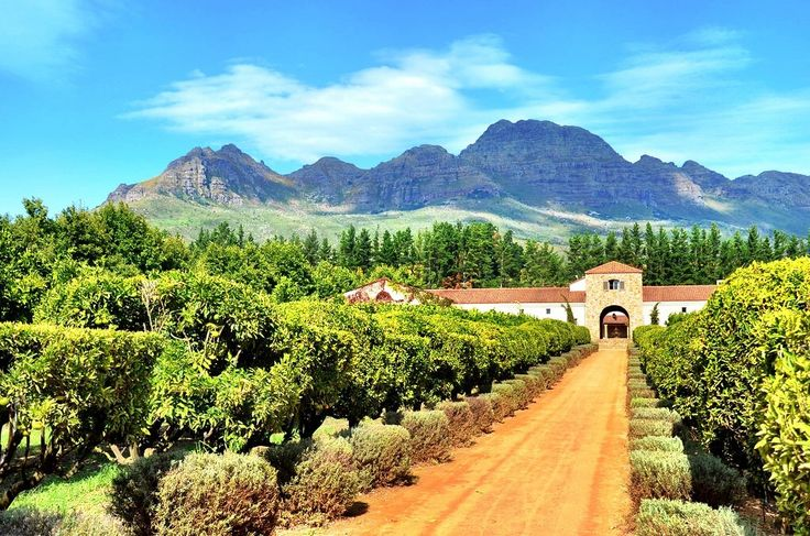 42 Things I Love About Stellenbosch, South Africa