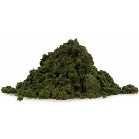 Η πιο αφομοιώσιμη πηγή σιδήρου και χλωροφύλλης είναι εδώ! - Βιολογική ωμή σκόνη χλωρέλλας - Organic raw chlorella powder