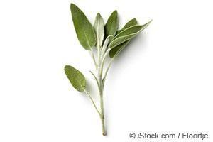 Sage herb benefits etc🌿...