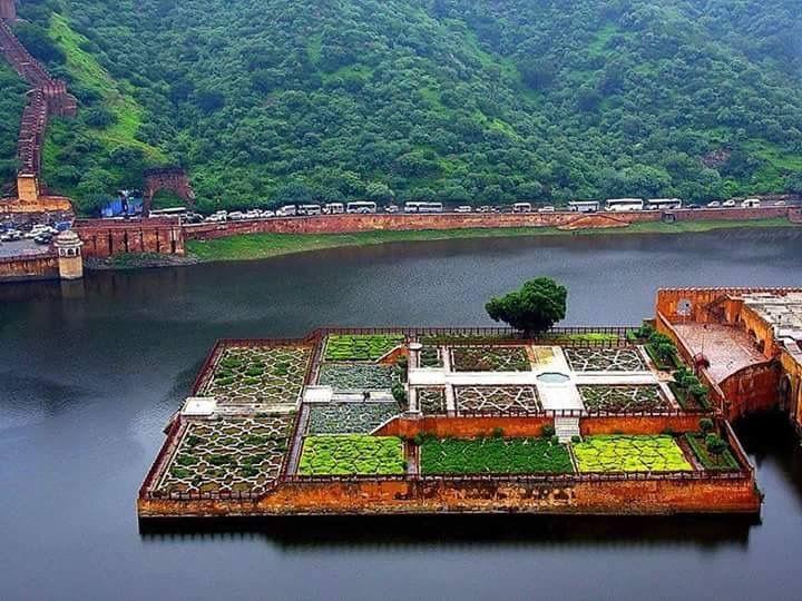 Saffron gardens , Aamer , Jaipur.