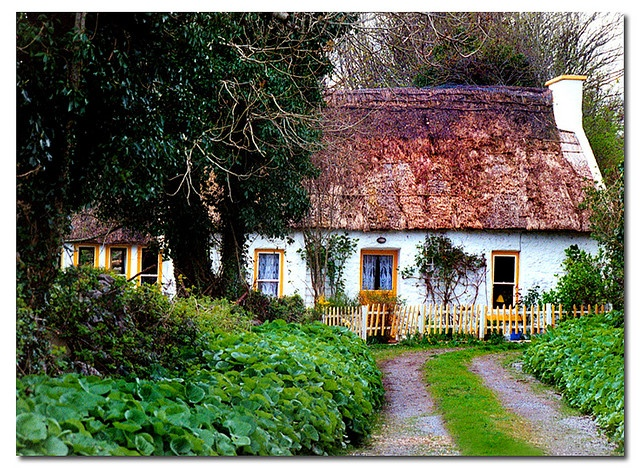 My future house (happens to be in Ireland, a small technicality). I would settle on living there for vacation.