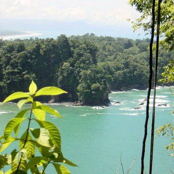 Au Costa Rica, le parc de Quepos dans la province de Puntarenas. Son intérêt réside dans son incroyable cadre naturel, entre forêt tropicale, mangrove et océan.