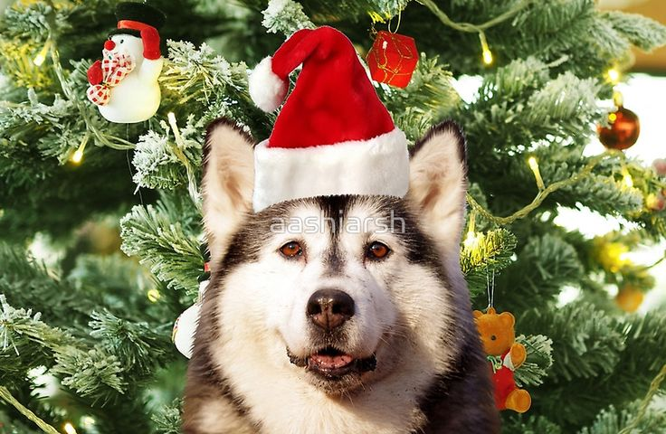 #Siberian #Husky #Christmas Tree #Ornaments #Snowman #animal #dog #pet