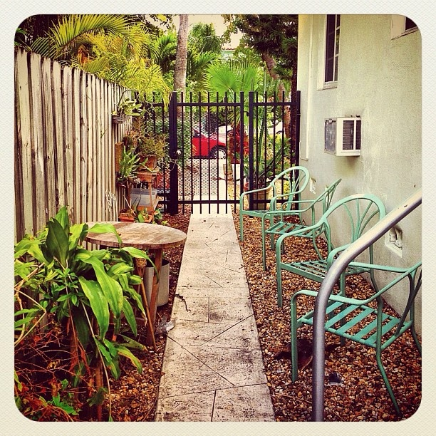 Secret garden @balazsroth- #webstagram