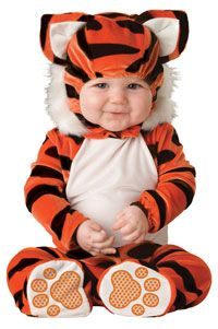 Little Baby Tiger Costume--REALLY Cute #Halloween #Babies http://poshonabudget.com/2014/09/really-cute-halloween-babies.html via @poshonabudget