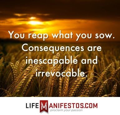Reap What You Sow Quotes Awesome 23 Best Sow What You Reap Images On Pinterest  So True Proverbs . Design Inspiration