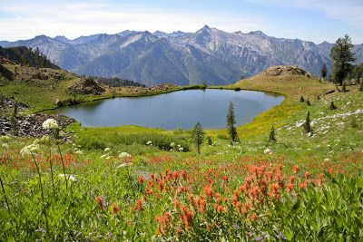 The Four Lakes Loop is one of the most spectacular and hard to reach places in the Trinity Alps Wilderness. There are many different ways o...