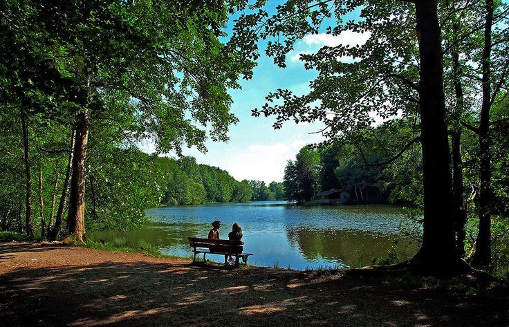 Superb Nach dem Essen soll man ruh n oder tausend Schritte tun Am Burbacher Waldweiher in Saarbr cken kann man beides Pinterest Ruhte und Essen