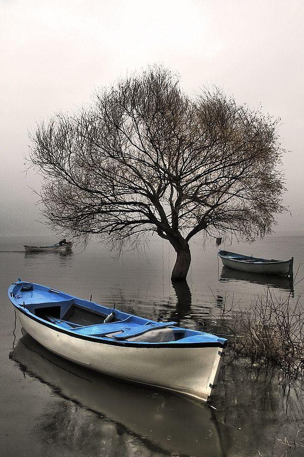 Gölyazı, Uluabat Lake, Bursa, Turkey