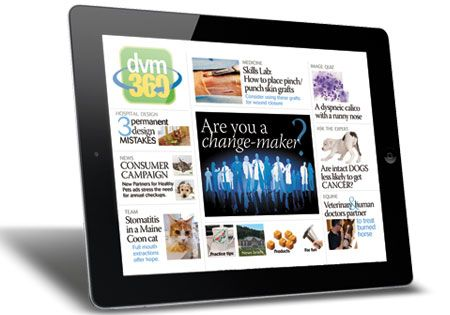 dvm360 iPad app, issue 26: New data from the dvm360 Change Survey; a how-to interactive feature on placing pinch/punch skin grafts; 3 permanent hospital design mistakes; and one team's story of tackling stomatitis in a Maine Coon cat; plus videos, photos, quizzes and more.