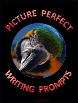 $3 grades 3-6   Looking for an effective tool for students to use during writing activities?  This 17-page package contains twelve photographs with creative writing prompts. Poetry, prose, persuasive writing, science fiction, screen writing and making inferences are some of the topics covered by the series of photographs in this package. Re-pin to remember!!!!