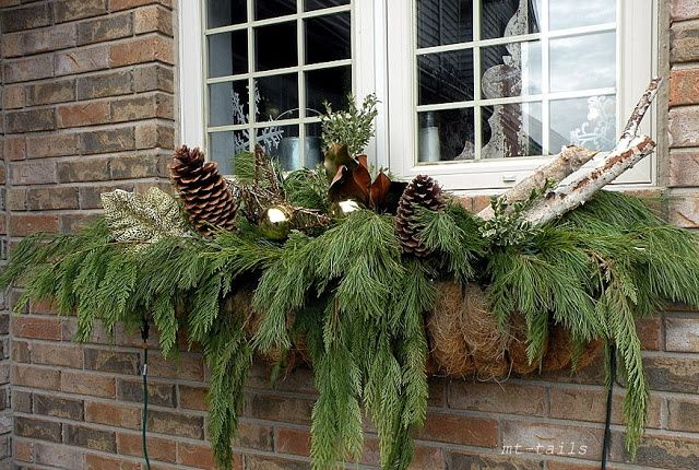 Holiday Window Boxes | MT-Tails christmas window boxes 2012 | holidays & winter