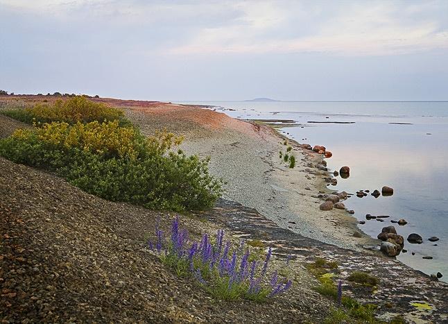 Neptuni åkrar, Öland, Sweden