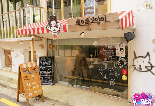 Cute Cafes - cute in korea