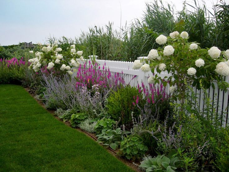Plant grouping for along fence Repetition and symmetry White hydrangea shaped into mini-tree,