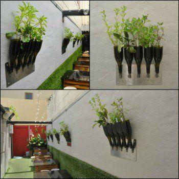 Herbs planter from Wine Bottle