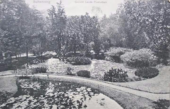 Kebun Raya Bogor, 1910