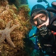 Learn to scuba dive--and do it in the Great Barrier Reef