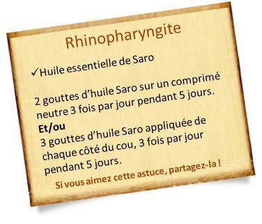 Huile essentielle Saro : polyvalente contre les maladies et contre la fatigue. Découvrez les propriétés et des recettes avec l'huile essentielle saro