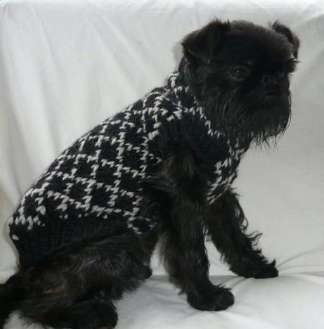 Diamond in the Ruff Pure Wool Puppy Sweater by mrsofttop on Etsy