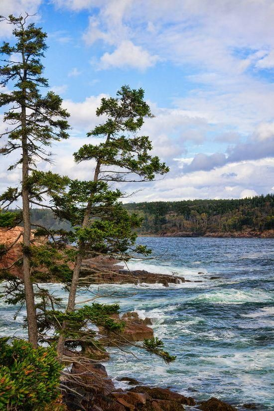 Acadia - Coast of Maine / via Bob Linton