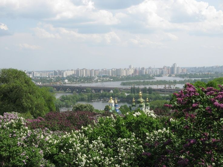 Ukraine Kiev Botanical Garden, Lilac blooming in May