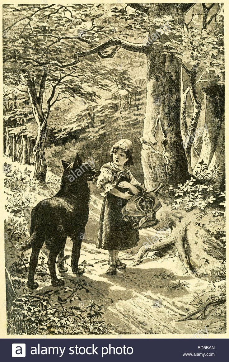 In 1812, the Grimm brothers, Jacob and Wilhelm, published Children and Household Tales, a collection German fairy tales. This illustration accompanied the ...