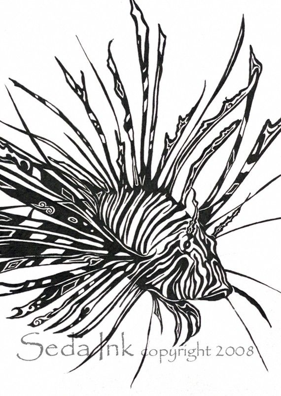 19 best art images on pinterest image vector photo art for Lionfish coloring page