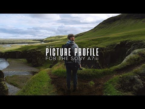 64) The BEST PICTURE PROFILE for the Sony a7iii (HLG vs