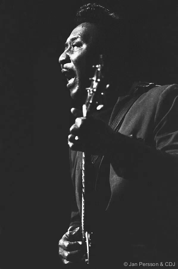 100 Best Muddy Waters Images On Pinterest Blues Music