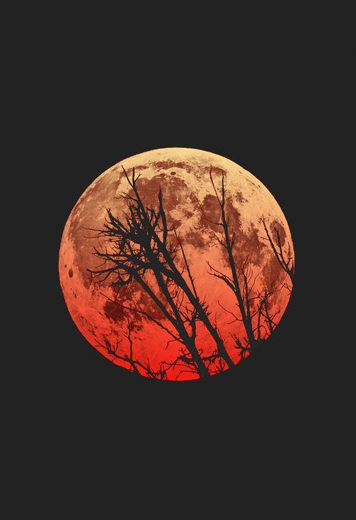 (9) lunar eclipse   Tumblr