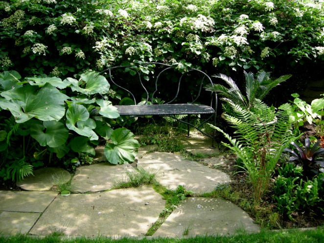 Awesome Chanticleer, Teacup Garden