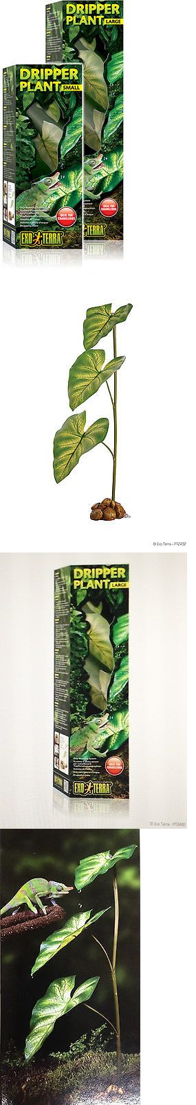 Reptile Supplies 1285: Exo Terra Dripper Plant Large , Hagen, Pt-2492 -> BUY IT NOW ONLY: $39.0 on eBay!