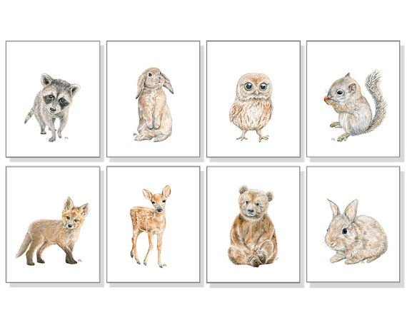 Woodland Animal Prints Forest Animal Prints Woodland Nursery Art Gender Neutral Art Bear Deer Bunny Rabbit Fox Squirrel Owl Raccoon Set of 8