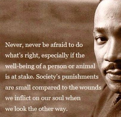 Never, Never be afraid to do what's right......~Martin Luther King Jr