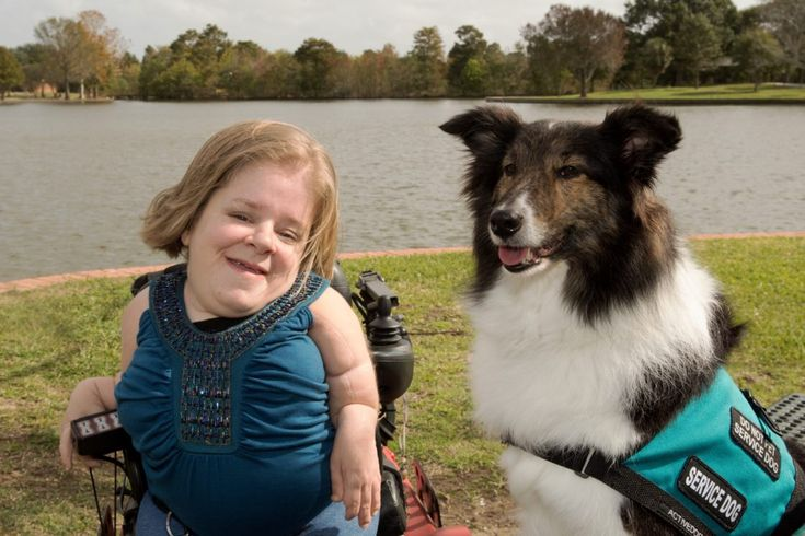 Meet Lexie, my service dog, in my blog, Looking Up!