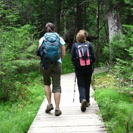 Le Sentier international des Appalaches - Québec vous offre une escapade à travers un paysage naturel exceptionnel. Faites comme les 37 millions de randonneurs qui parcourent l'Appalachian Trail aux États-Unis et venez vous balader sur le plus long sentier de l'Amérique du Nord. Au sommet des montagnes vous pourrez découvrir la rondeur des plaines, le majestueux fleuve Saint-Laurent, une flore impressionnante et une faune sauvage.