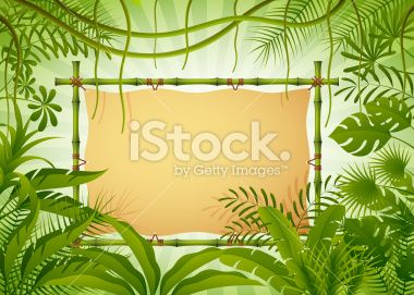 Bamboo Banner in the Jungle Royalty Free Stock Vector Art Illustration