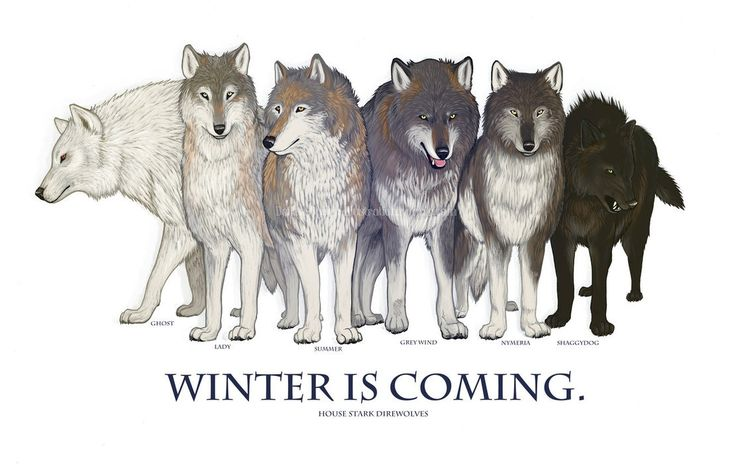 game-of-thrones-ghost-house-2853292-1111x719.jpg (1111×719)
