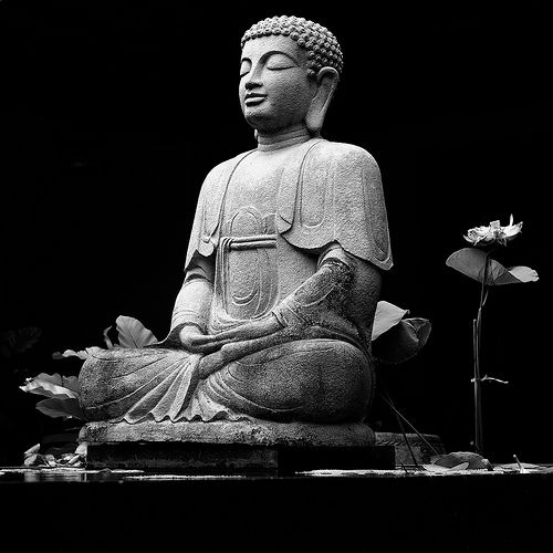 By your own efforts Waken yourself, watch yourself. And live joyfully. You are the master. ~ the Buddha