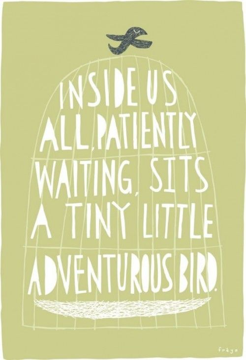 tiny little adventurous bird.: Thoughts, Birds Prints, Life, Little Birds, Inside, Art Prints, Living, Travel Quotes, Adventure Birds