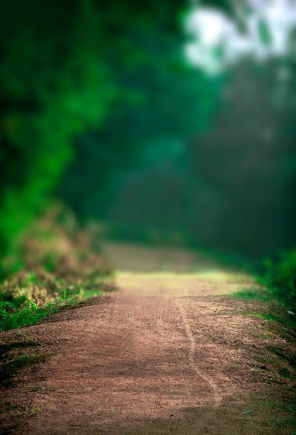 New Natural Backgrounds For Photo Editing Blur Photo Background Blur Image Background Photo Background Images