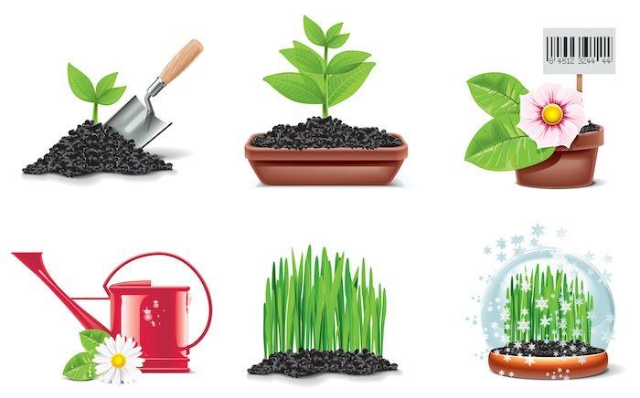 Você sabia que plantar em casa Alfazema, Manjericão e Hortelã afastam a Zika da sua casa? Estas são algumas plantas repelentes naturais que além de...