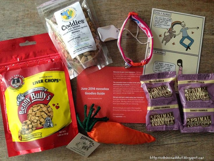 Canadian Subscription Box Addict meowbox review June