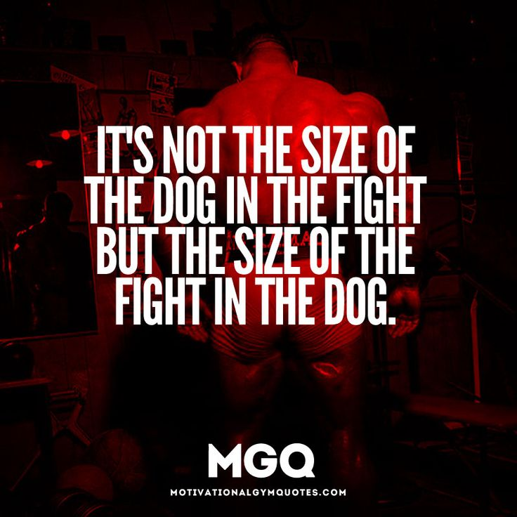 It S Not The Size Of The Dog In The Fight Quote Tekil