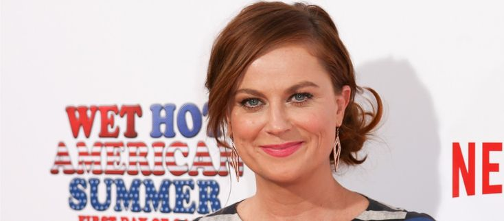 When it comes to famous Solo Moms who rock, Amy Poehler takes the cake.