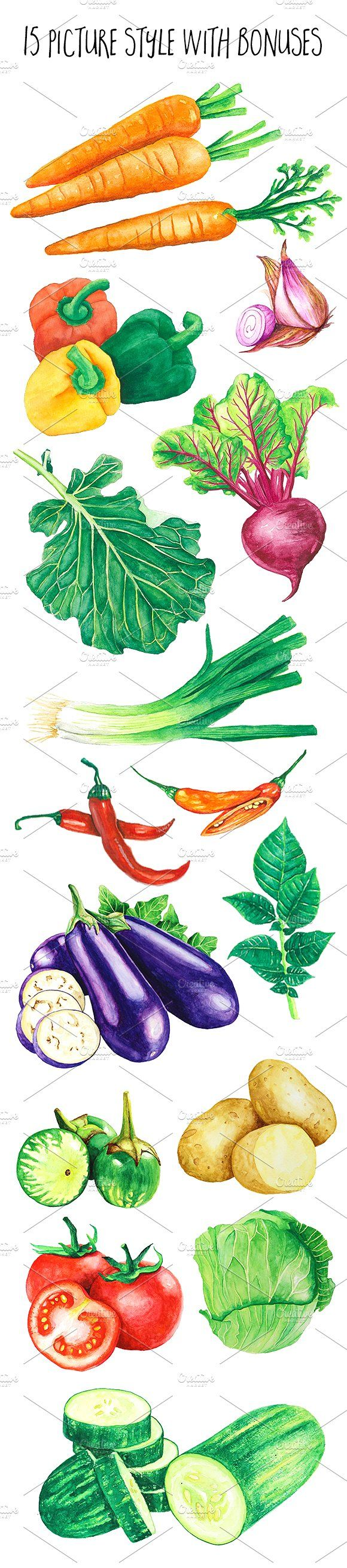 Vegetables Watercolor Illustration by andypray on @creativemarket