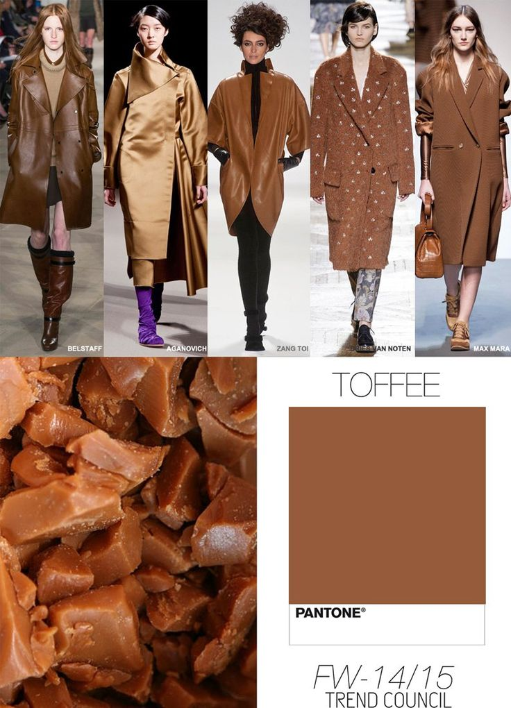 TREND COUNCIL FALL/WINTER 2014- TOFFEE