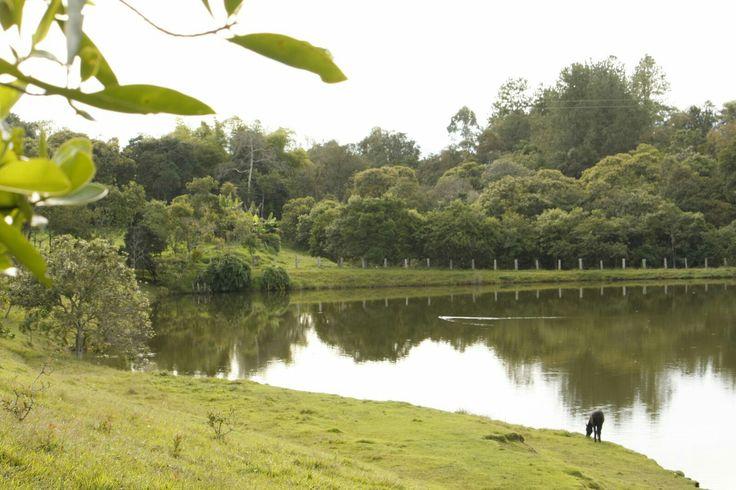 Laguna, Popayán. Foto por Gloria Vejarano.